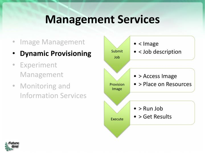 Management Services