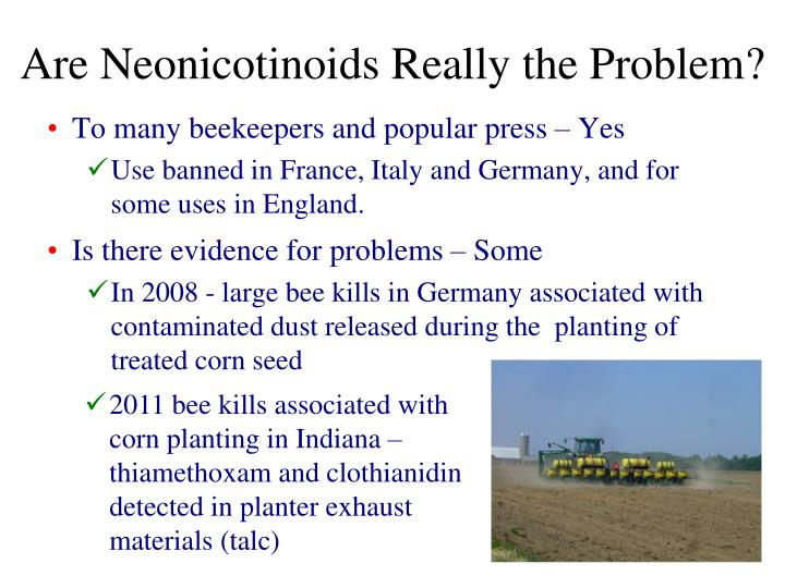 Are Neonicotinoids Really the Problem?
