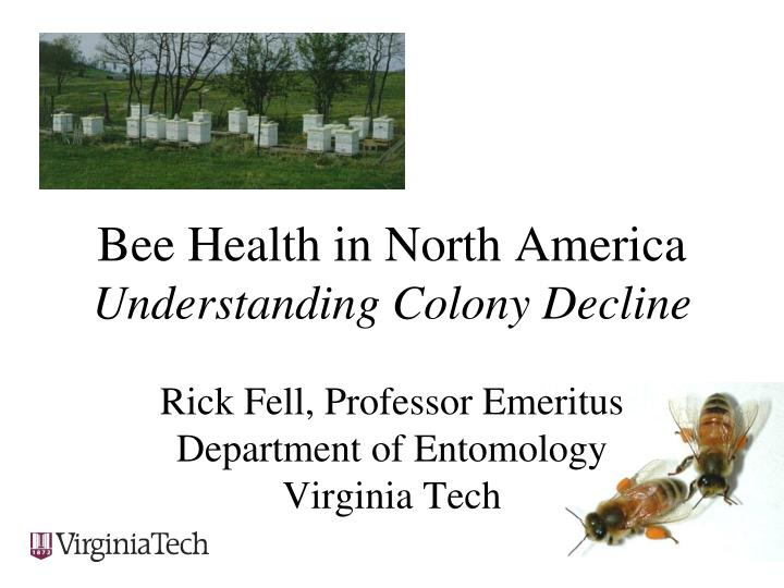 Bee health in north america understanding colony decline
