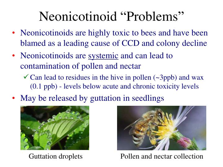 "Neonicotinoid ""Problems"""