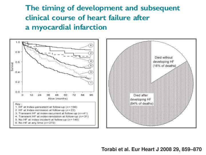 Torabi et al. Eur Heart J 2008 29, 859–870