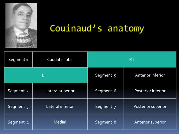 Couinaud's