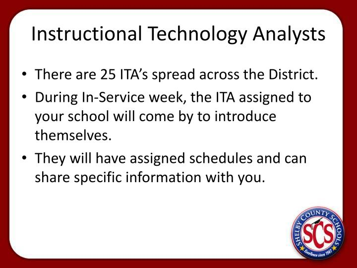 Instructional Technology Analysts