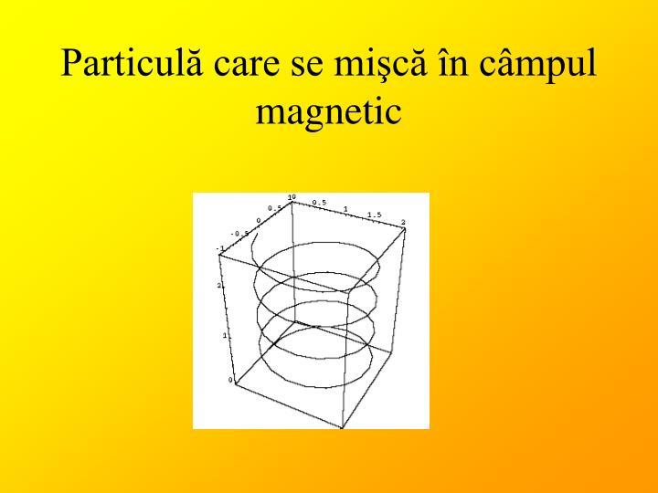 Particulă care se mişcă în câmpul magnetic