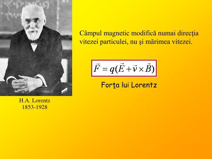 Câmpul magnetic modifică numai direcţia