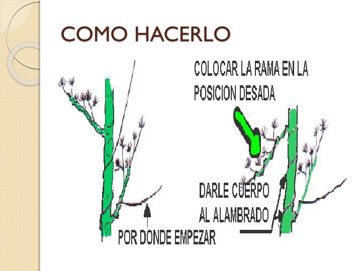 COMO HACERLO