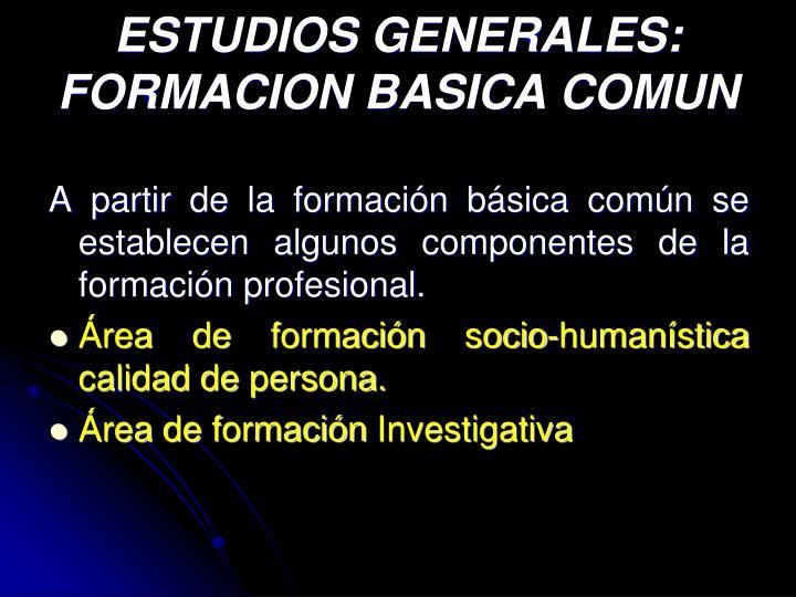ESTUDIOS GENERALES: FORMACION BASICA COMUN