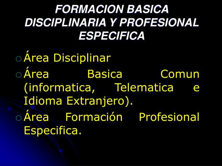 FORMACION BASICA DISCIPLINARIA Y PROFESIONAL ESPECIFICA