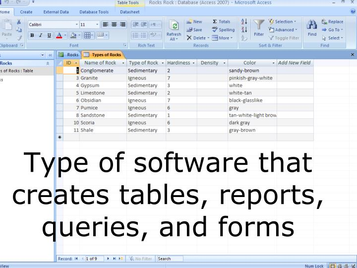 Type of software that creates tables, reports, queries, and forms