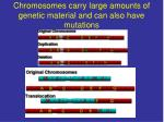 chromosomes carry large amounts of genetic material and can also have mutations