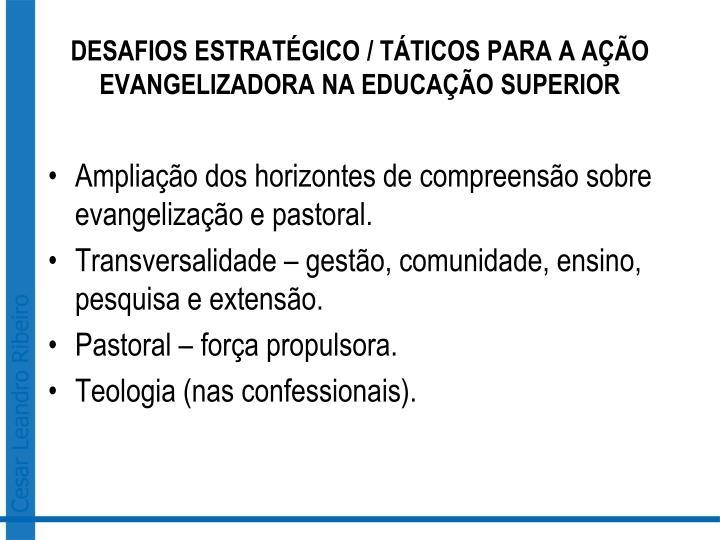 DESAFIOS ESTRATÉGICO / TÁTICOS PARA A AÇÃO EVANGELIZADORA NA EDUCAÇÃO SUPERIOR