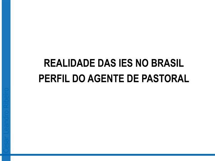REALIDADE DAS IES NO BRASIL