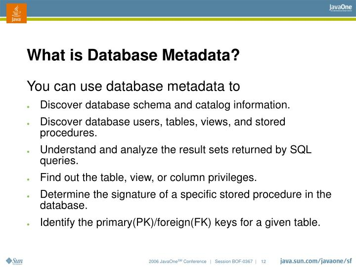 What is Database Metadata?