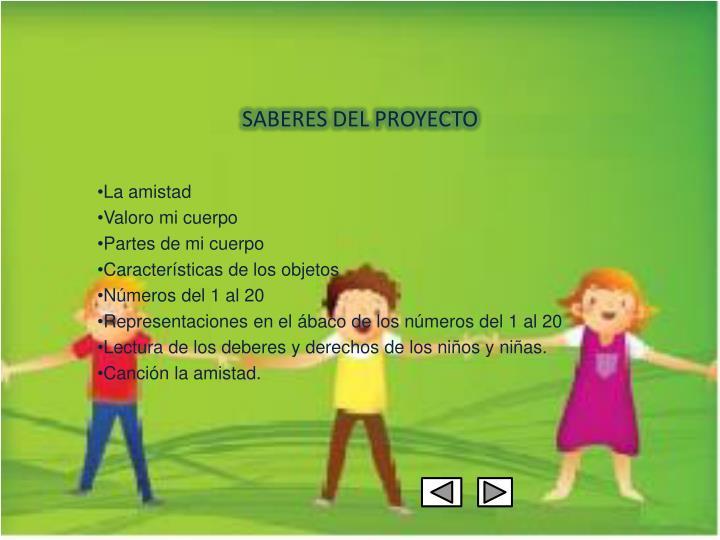 SABERES DEL PROYECTO