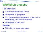 workshop process