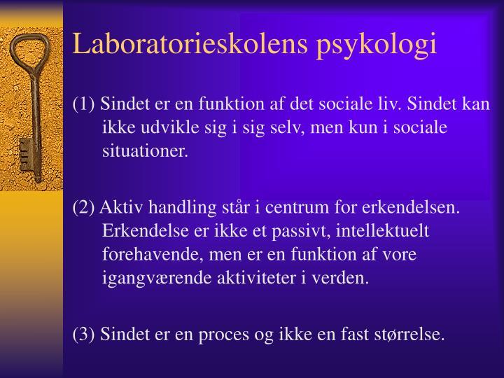 Laboratorieskolens psykologi