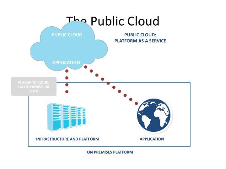 The Public Cloud