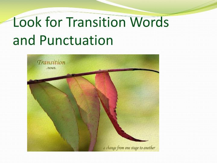 Look for Transition Words