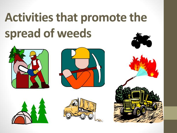 Activities that promote the