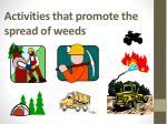 activities that promote the spread of weeds