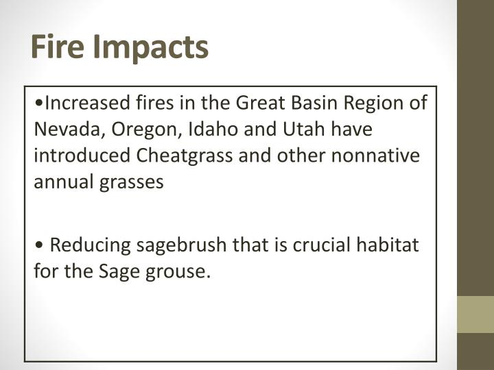 Fire Impacts