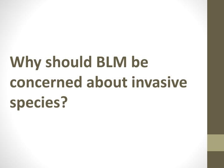 Why should BLM be concerned about invasive species?