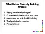 what makes diversity training unique