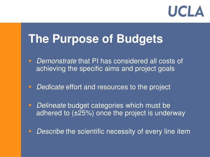 The Purpose of Budgets
