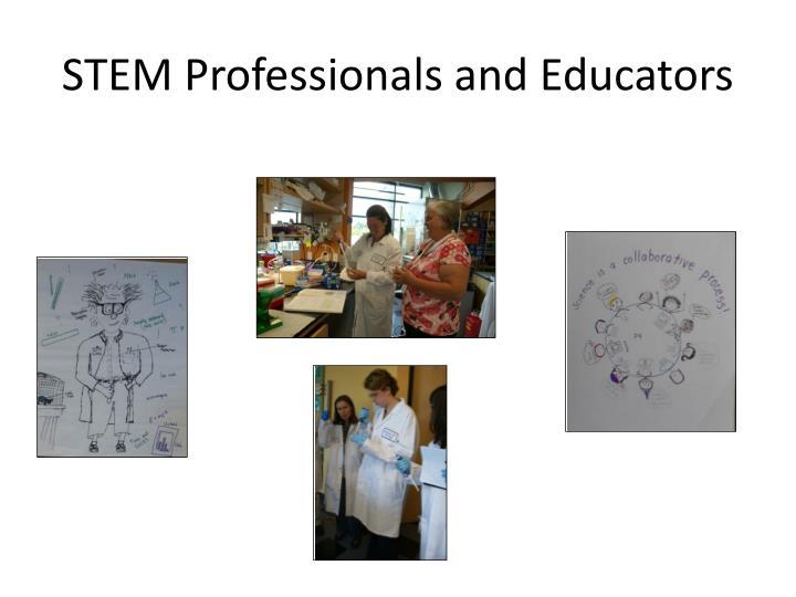 STEM Professionals and Educators