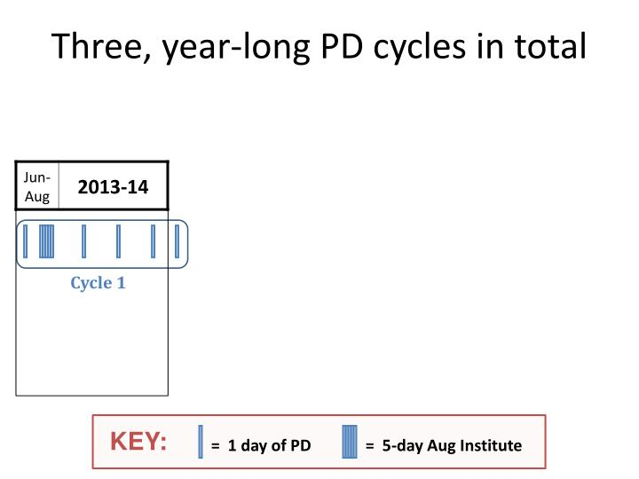 Three, year-long PD cycles in total