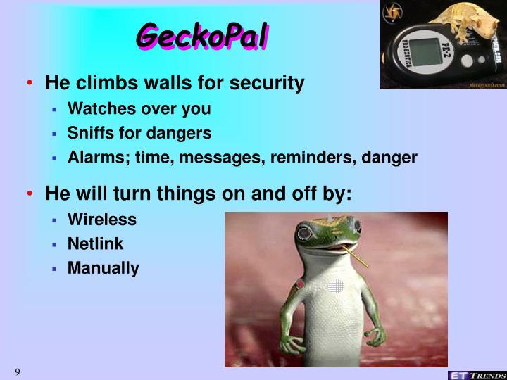 GeckoPal