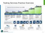 testing services practice overview
