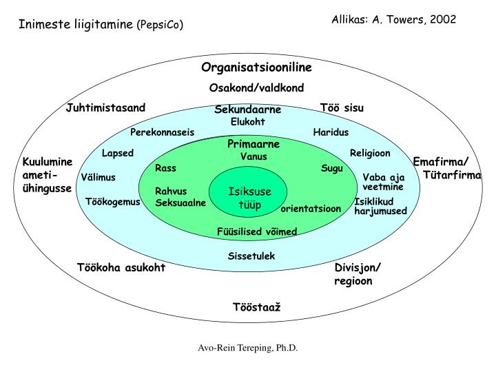 Organisatsiooniline
