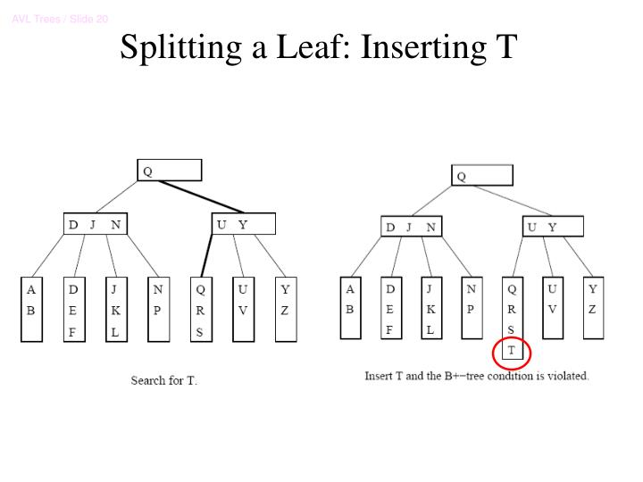 Splitting a Leaf: Inserting T