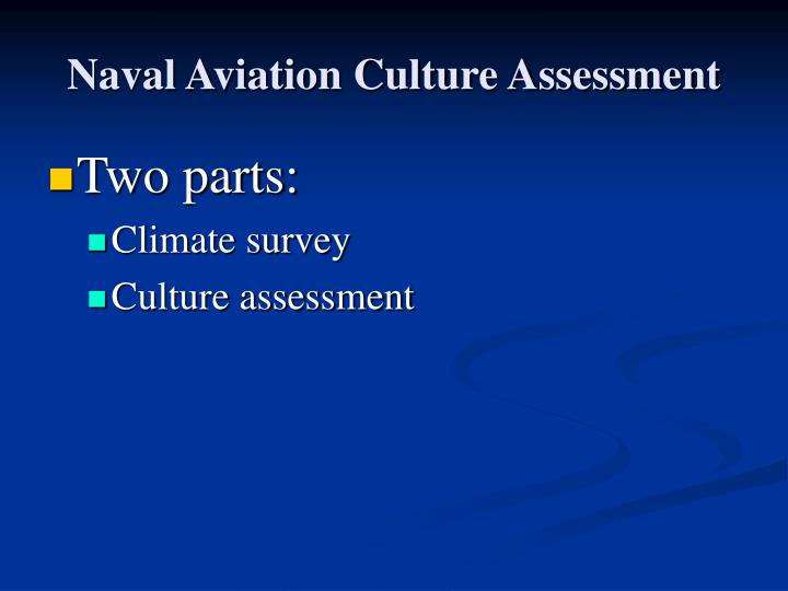 Naval Aviation Culture Assessment