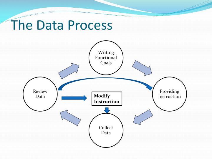 The Data Process