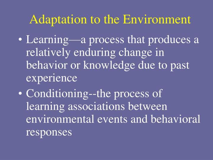 Adaptation to the Environment