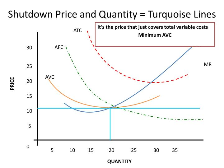 Shutdown Price and Quantity = Turquoise Lines