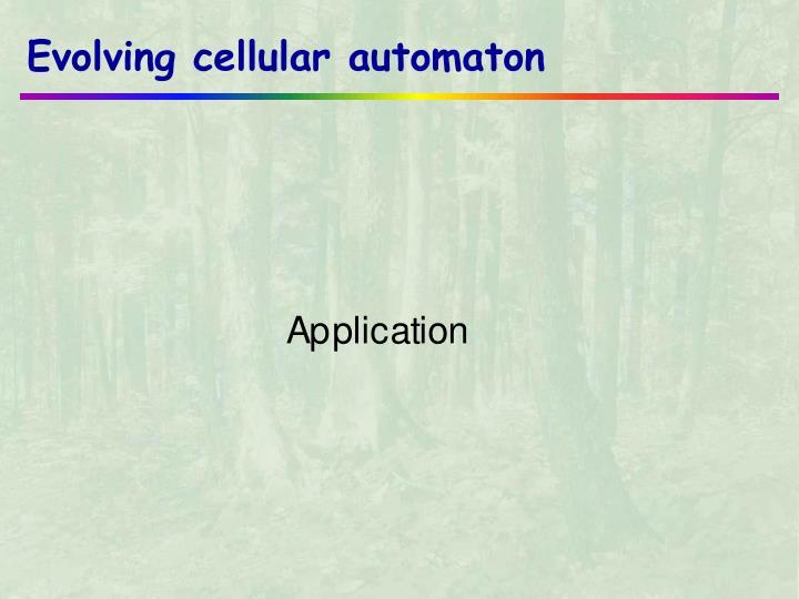 Evolving cellular automaton