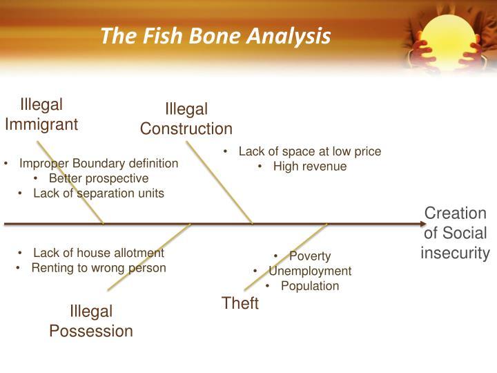 The Fish Bone Analysis