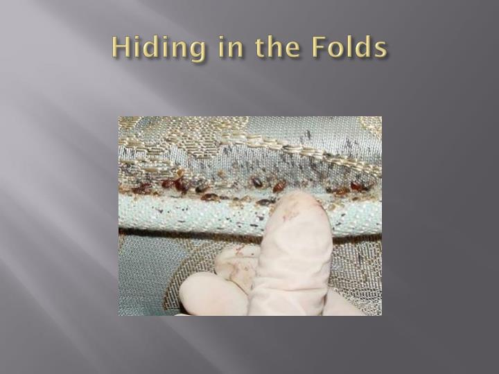 Hiding in the Folds