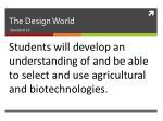 the design world1