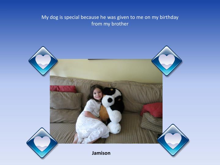 My dog is special because he was given to me on my birthday