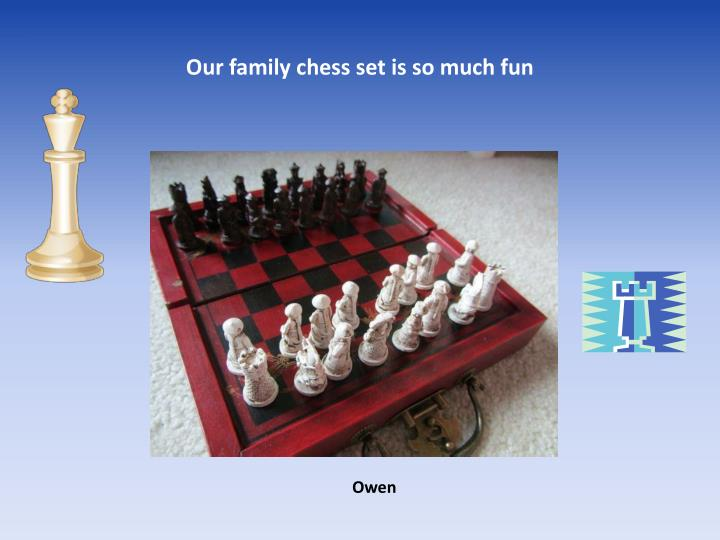 Our family chess set is so much fun