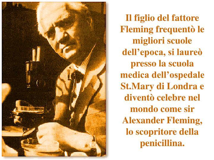 Il figlio del fattore Fleming frequentò le migliori scuole dell'epoca, si laureò presso la scuola medica dell'ospedale St.Mary di Londra e diventò celebre nel mondo come sir Alexander Fleming, lo scopritore della penicillina.