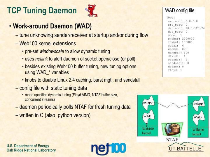 TCP Tuning Daemon