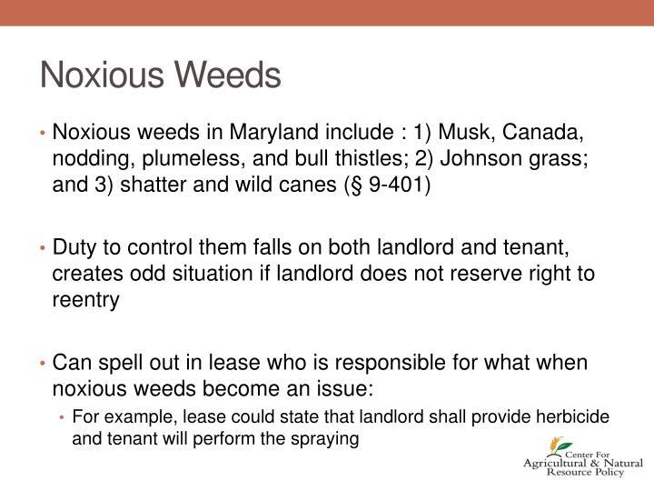 Noxious Weeds