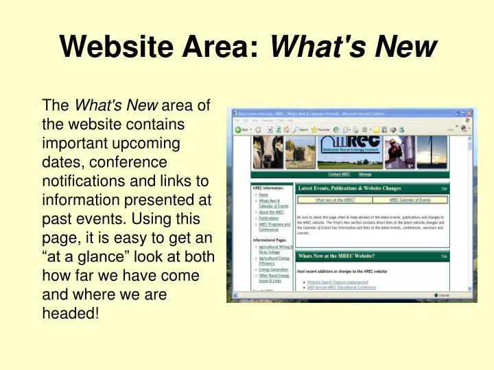 Website Area:
