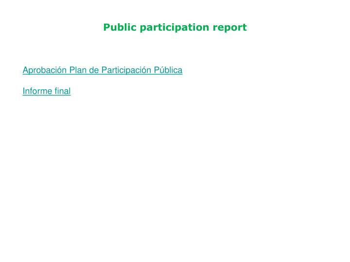 Public participation report
