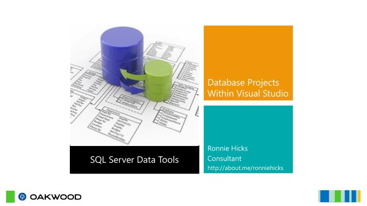 Database Projects Within Visual Studio